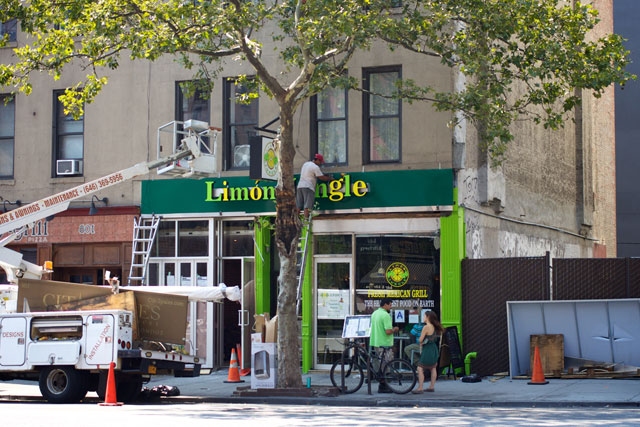The new storefront at Limón Jungle
